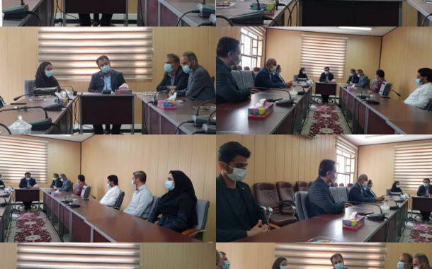 مهرانگیز قلی پوربه عنوان مدیر آموزش و پژوهش های توسعه و آینده نگری سازمان معرفی شد
